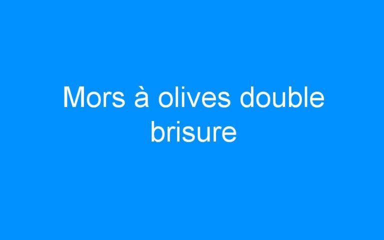 Mors à olives double brisure