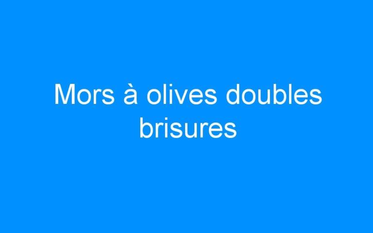 Mors à olives doubles brisures