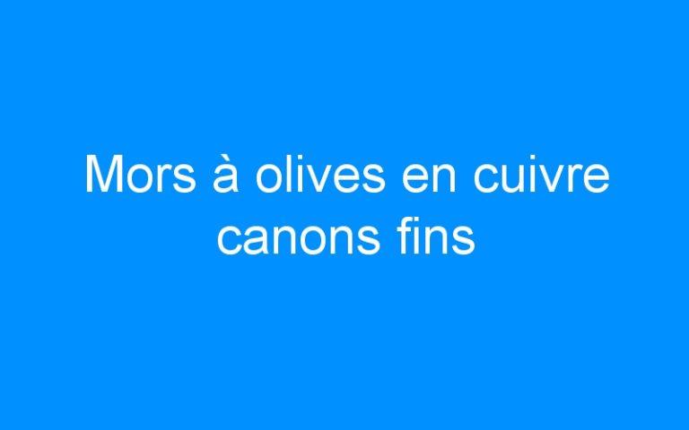 Mors à olives en cuivre canons fins