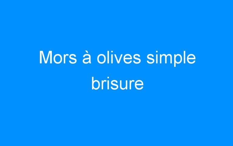 Mors à olives simple brisure