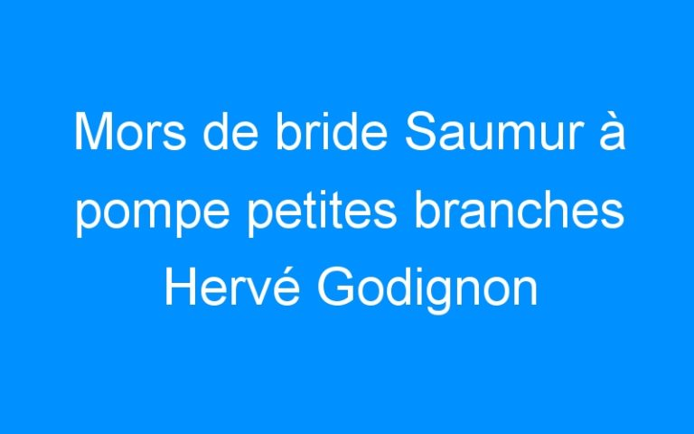 Mors de bride Saumur à pompe petites branches Hervé Godignon