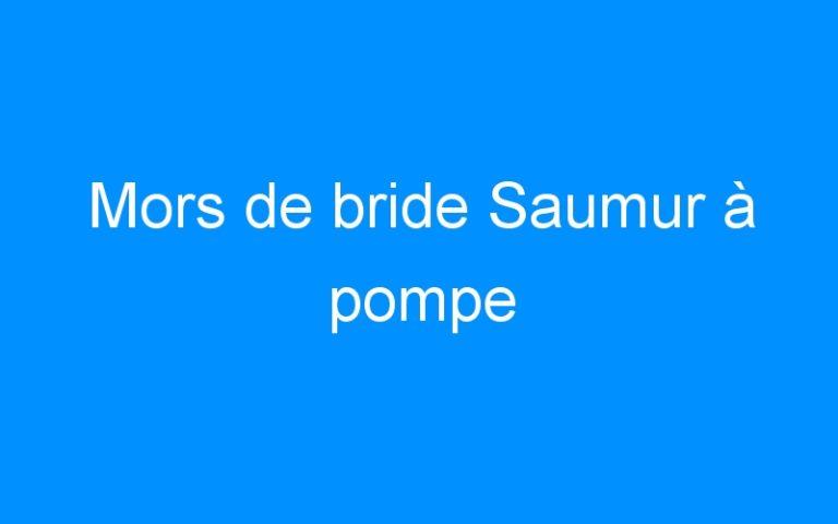 Mors de bride Saumur à pompe