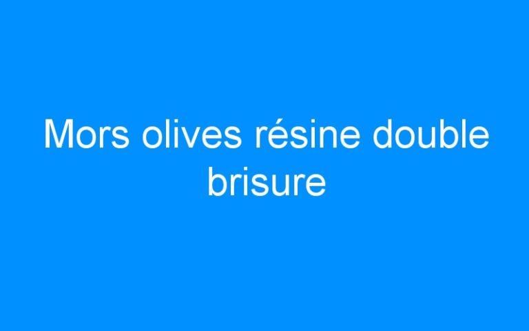 Mors olives résine double brisure