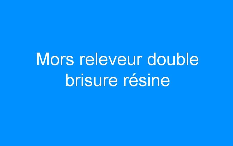 Mors releveur double brisure résine