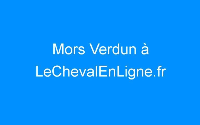 Mors Verdun à LeChevalEnLigne.fr