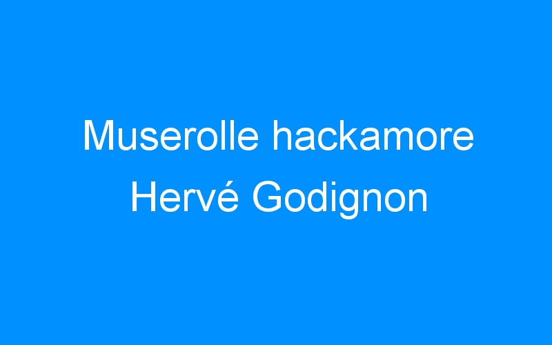 Muserolle hackamore Hervé Godignon