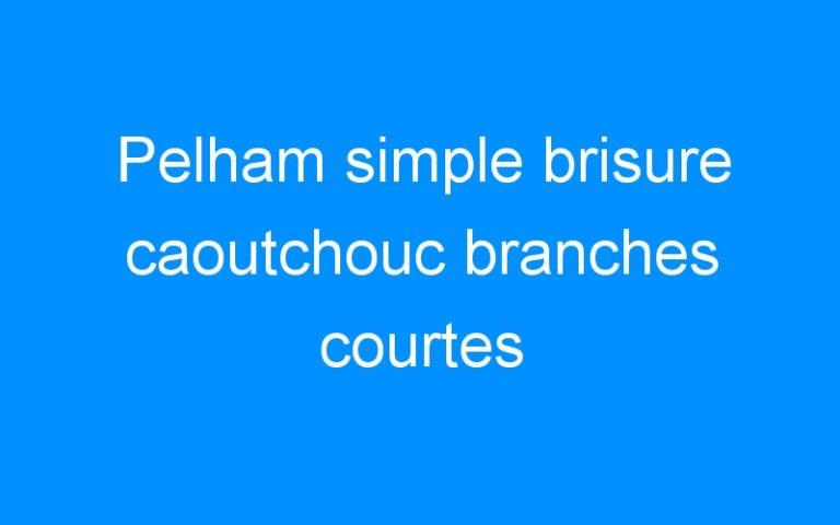 Pelham simple brisure caoutchouc branches courtes
