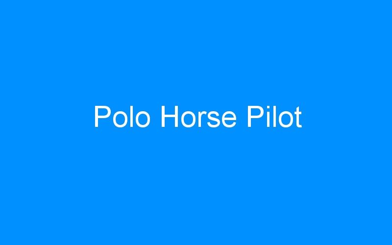 Polo Horse Pilot