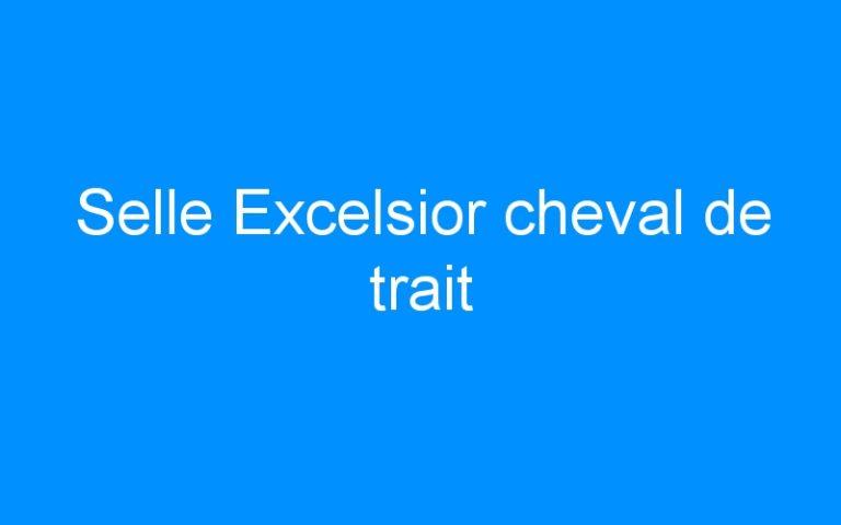 Selle Excelsior cheval de trait