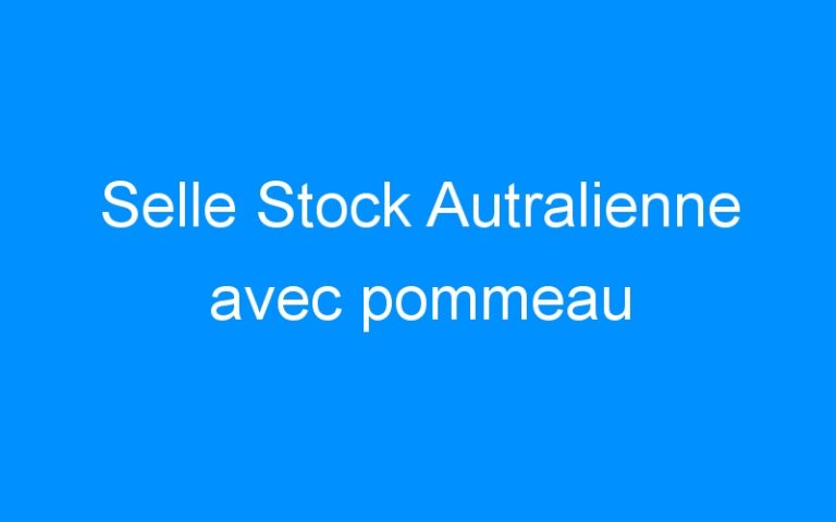 Selle Stock Autralienne avec pommeau