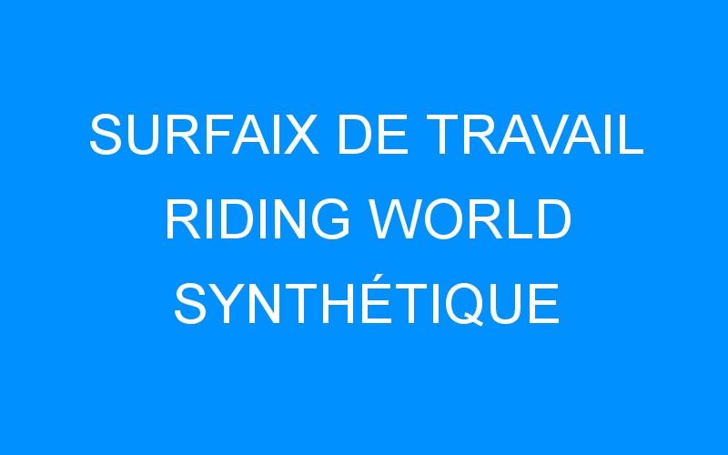 SURFAIX DE TRAVAIL RIDING WORLD SYNTHÉTIQUE