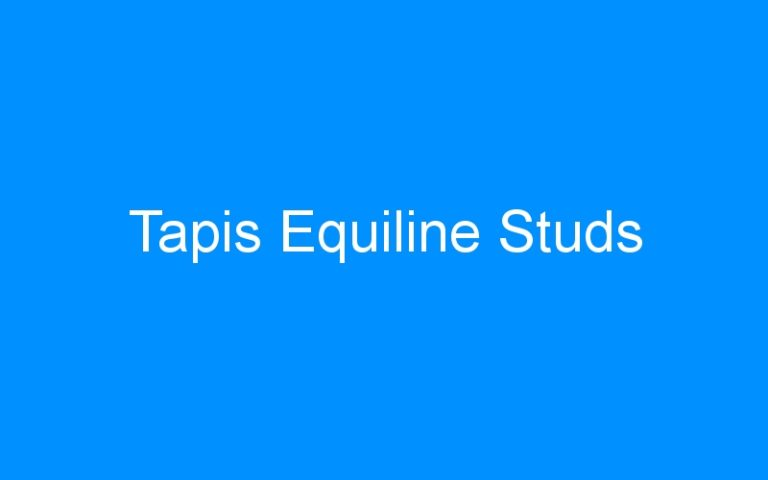 Tapis Equiline Studs